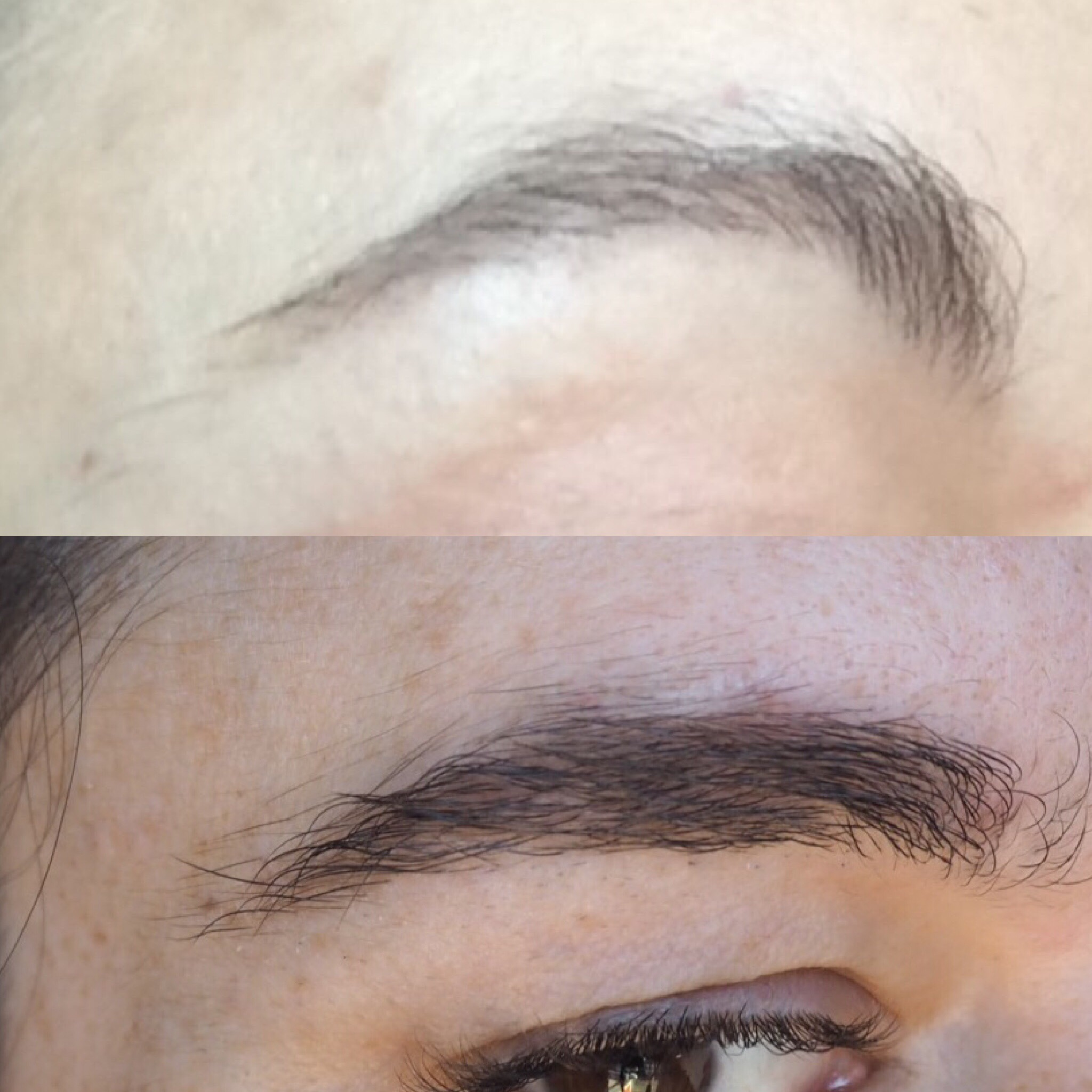 How To Grow Back Sparse Overplucked Brows – NiaPattenLooks
