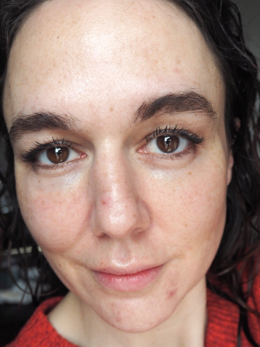 L'Oréal Infallible Total Cover Foundation- No Makeup
